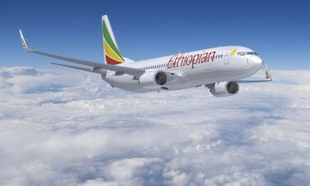 More airlines ground B737 MAX fleets after Ethiopian crash