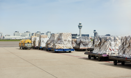 Schiphol re-routes the management of its cargo business