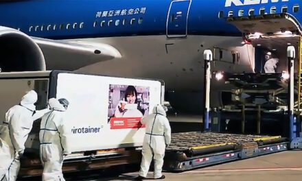 Managing global freight bottlenecks pays off for K + N