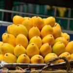 Ripe mango shipments galore thanks to India's Bangalore